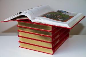Libro y catalogo